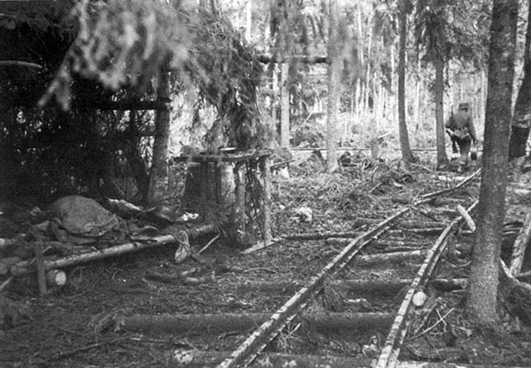 Diverses photos de la WWII - Page 3 18816