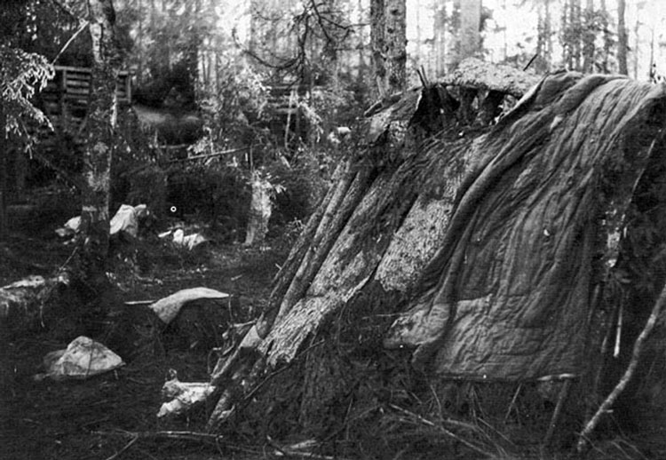 Diverses photos de la WWII - Page 3 20117