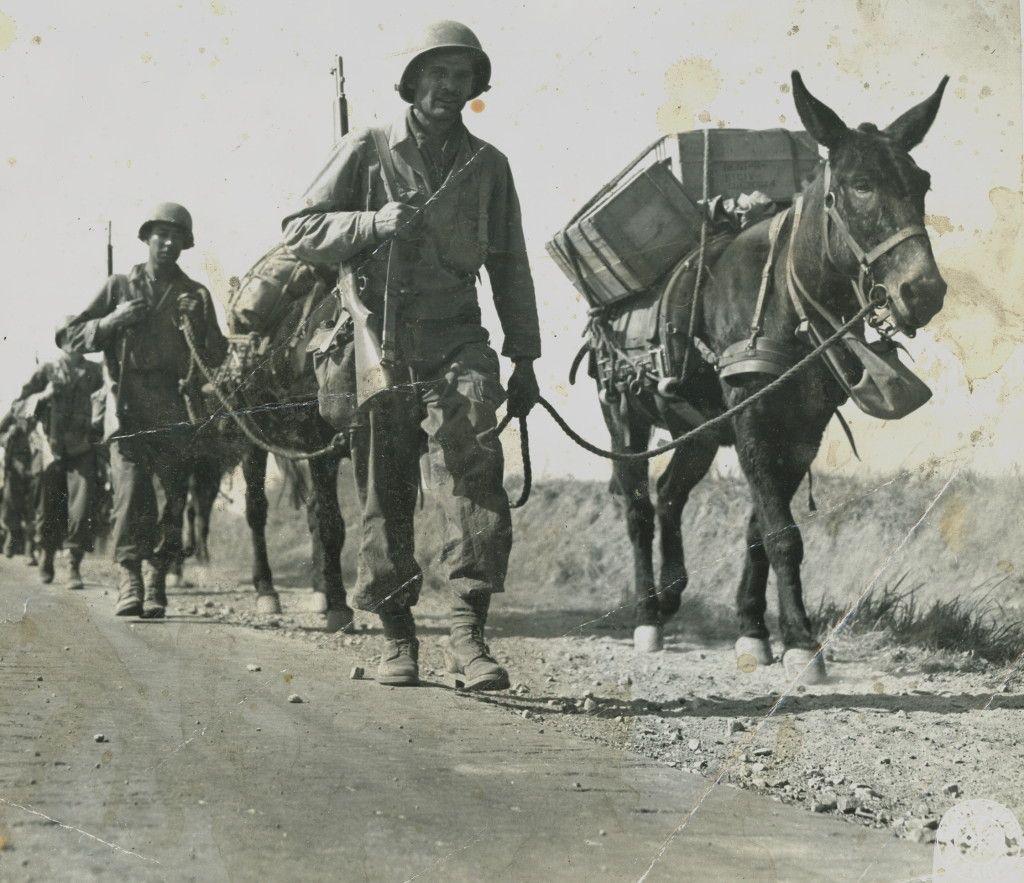 Diverses photos de la WWII (fichier 7) - Page 3 22925
