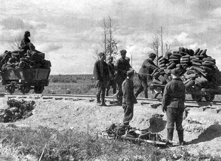 Diverses photos de la WWII - Page 4 24814
