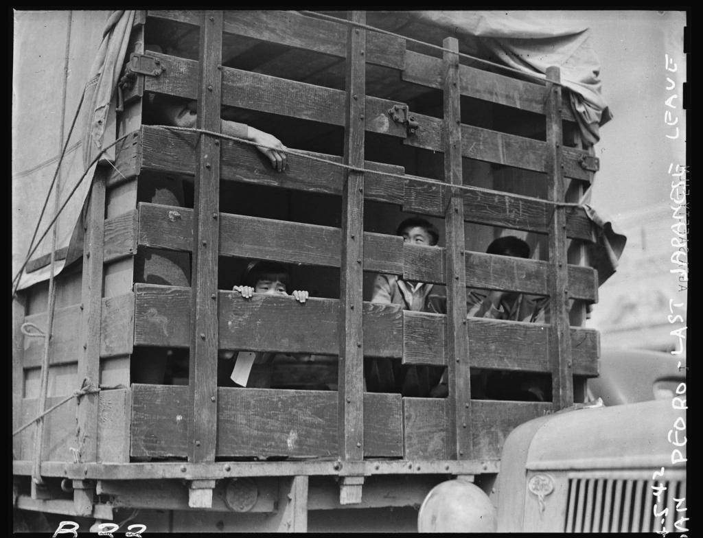 Diverses photos de la WWII - Page 40 2551