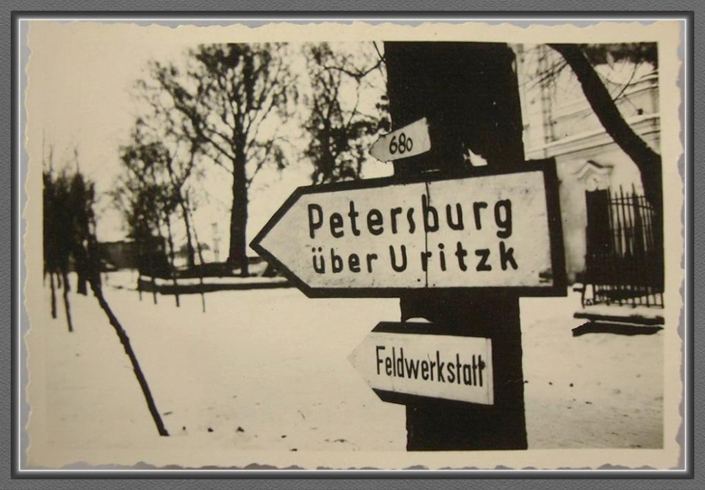 Diverses photos de la WWII - Page 4 29810