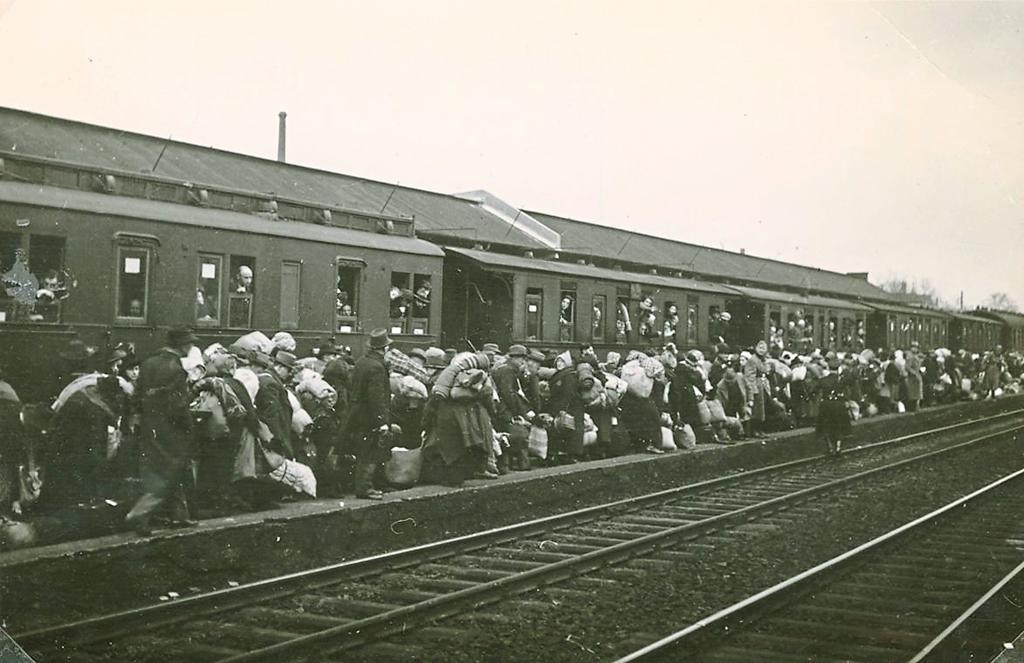 Diverses photos de la WWII - Page 6 3223