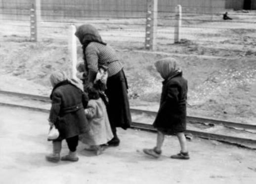 Diverses photos de la WWII 3842
