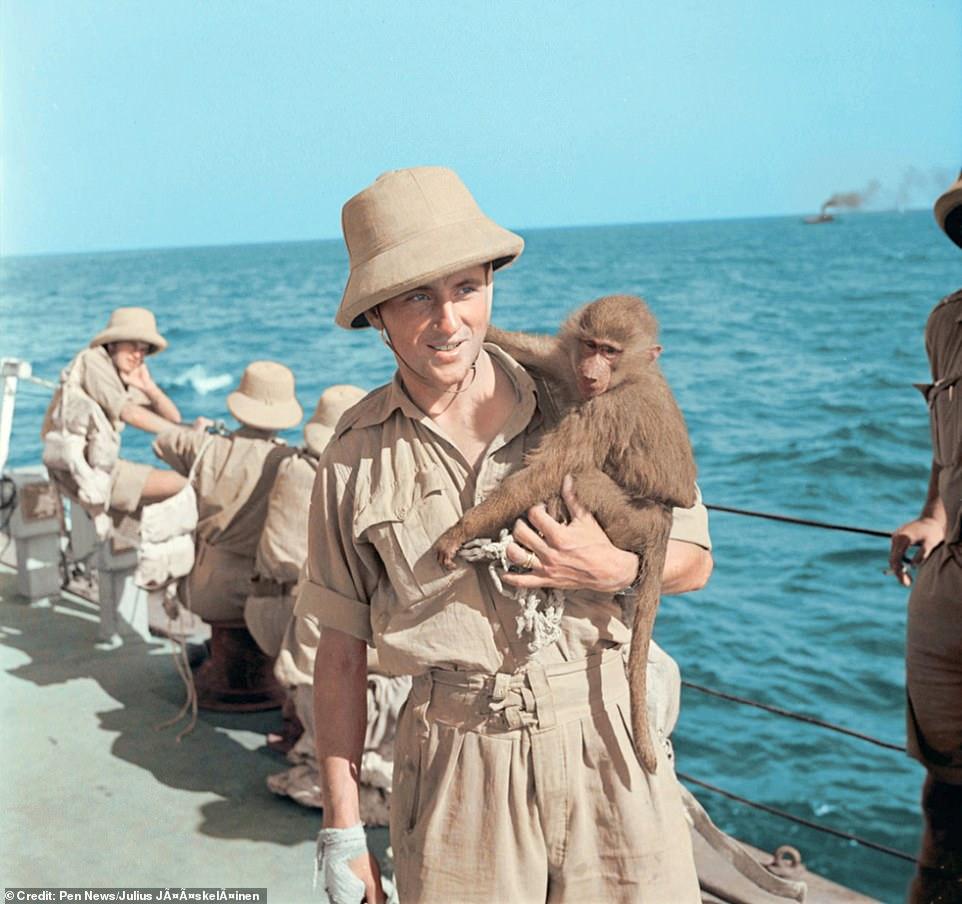 Diverses photos de la WWII 43618