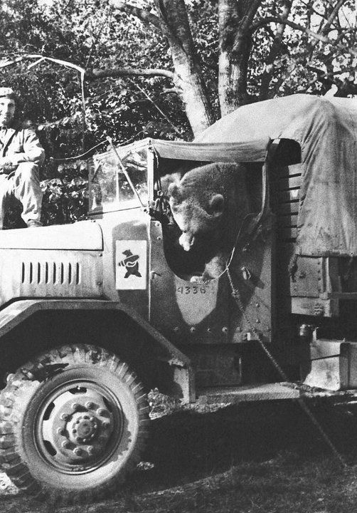 Diverses photos de la WWII - Page 2 5133