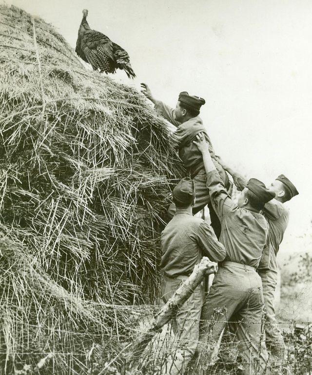 Diverses photos de la WWII (fichier 7) - Page 39 67523