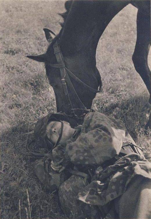 Diverses photos de la WWII - Page 30 73718