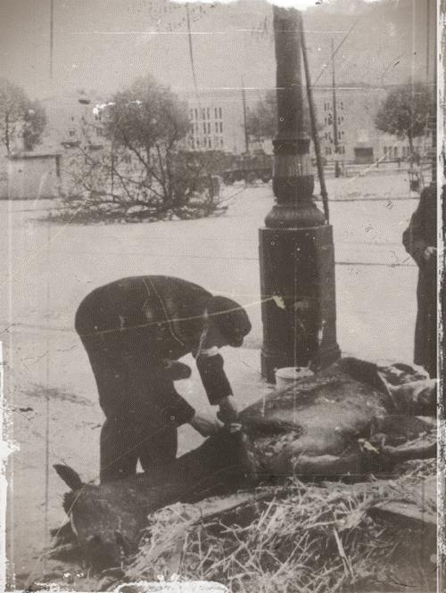 Diverses photos de la WWII - Page 32 83620