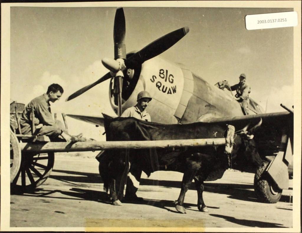Diverses photos de la WWII - Page 39 9234