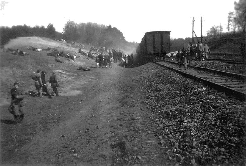 Diverses photos de la WWII - Page 40 94212
