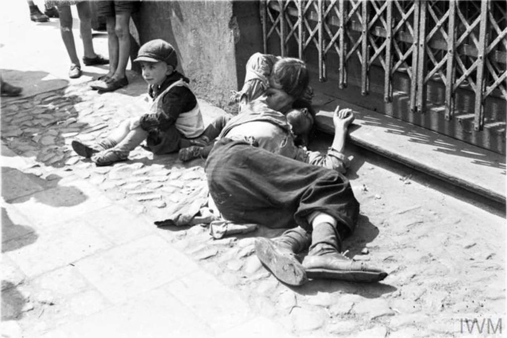 Diverses photos de la WWII - Page 40 95011