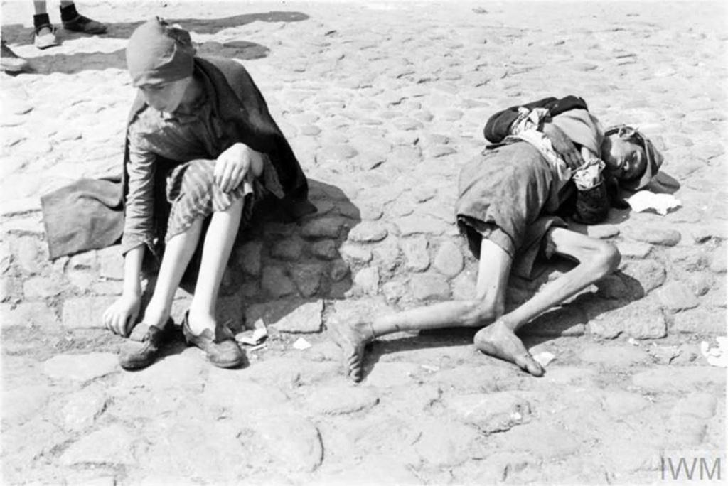 Diverses photos de la WWII - Page 40 95211