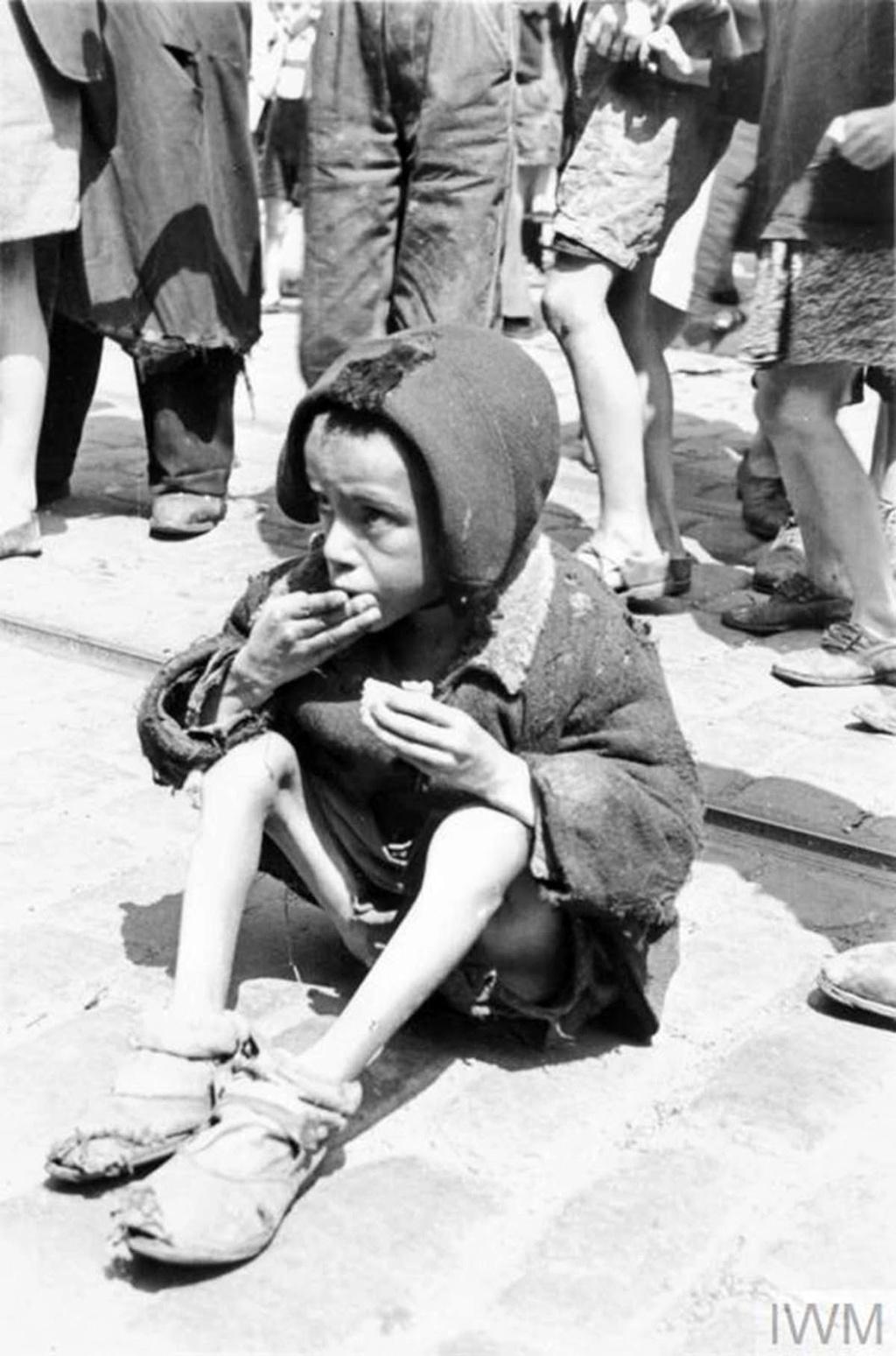 Diverses photos de la WWII - Page 40 95410
