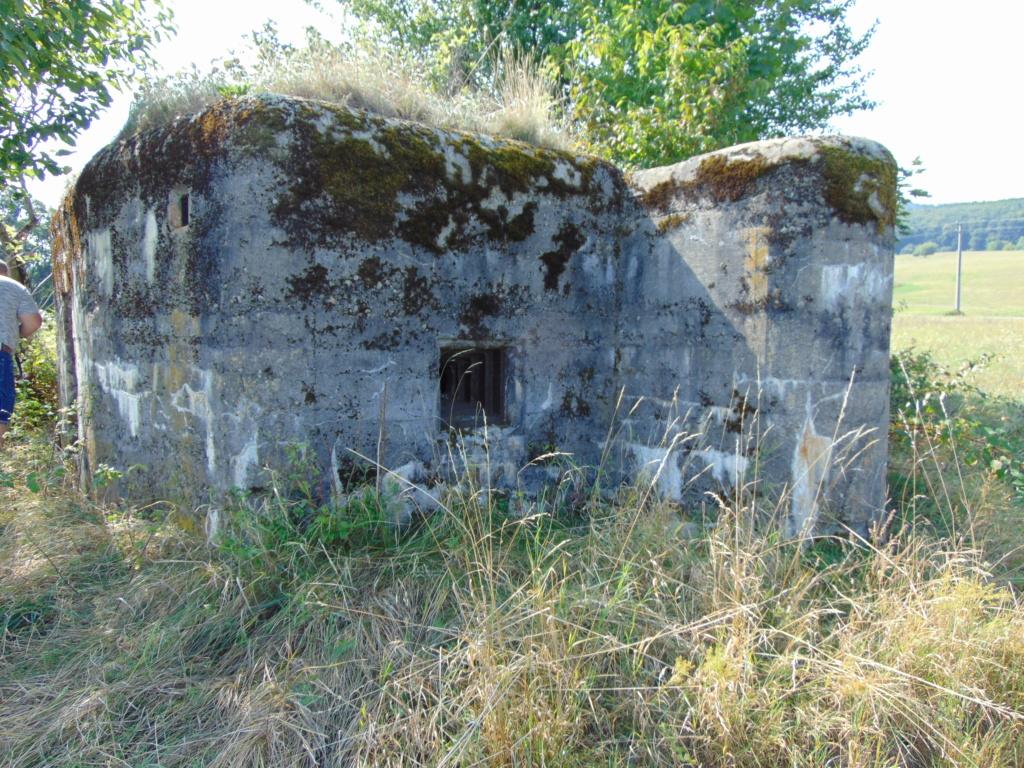Nid de mitrailleuse slovaque Dsc01346
