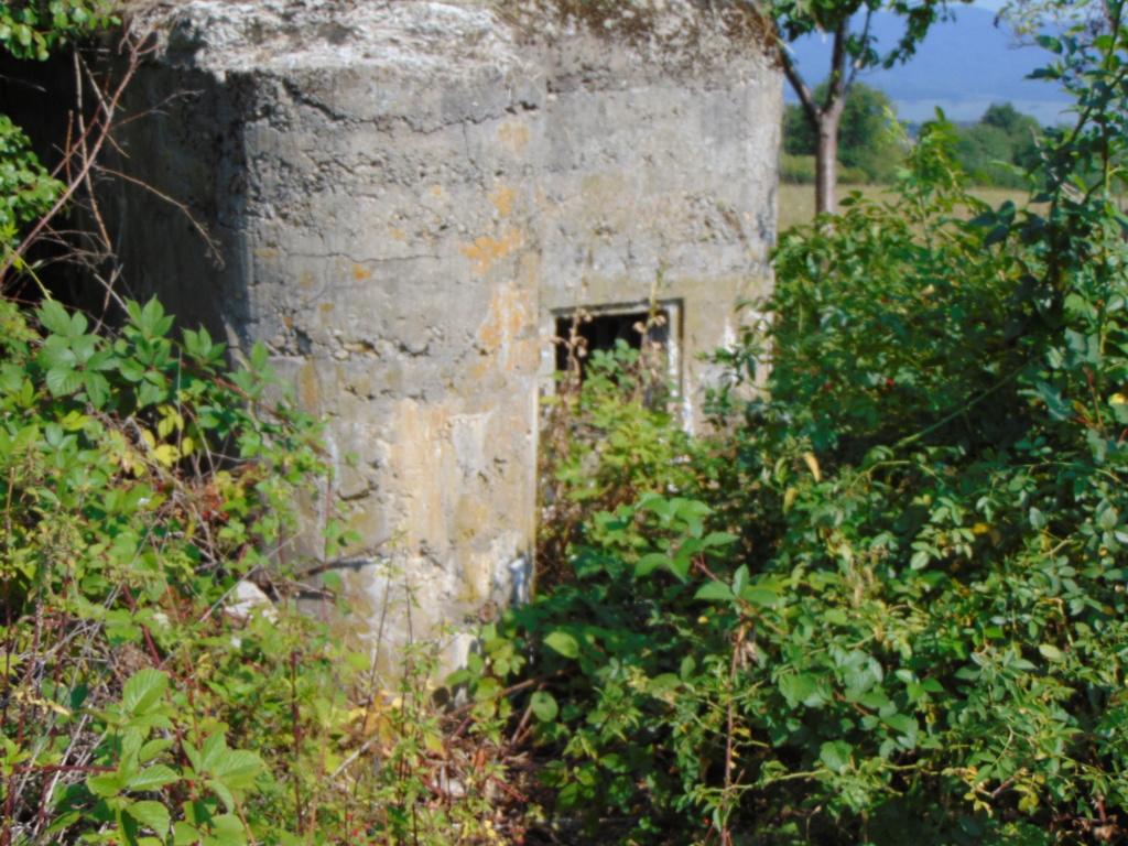 Nid de mitrailleuse slovaque Dsc01348