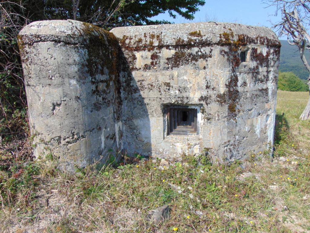 Nid de mitrailleuse slovaque Dsc01349