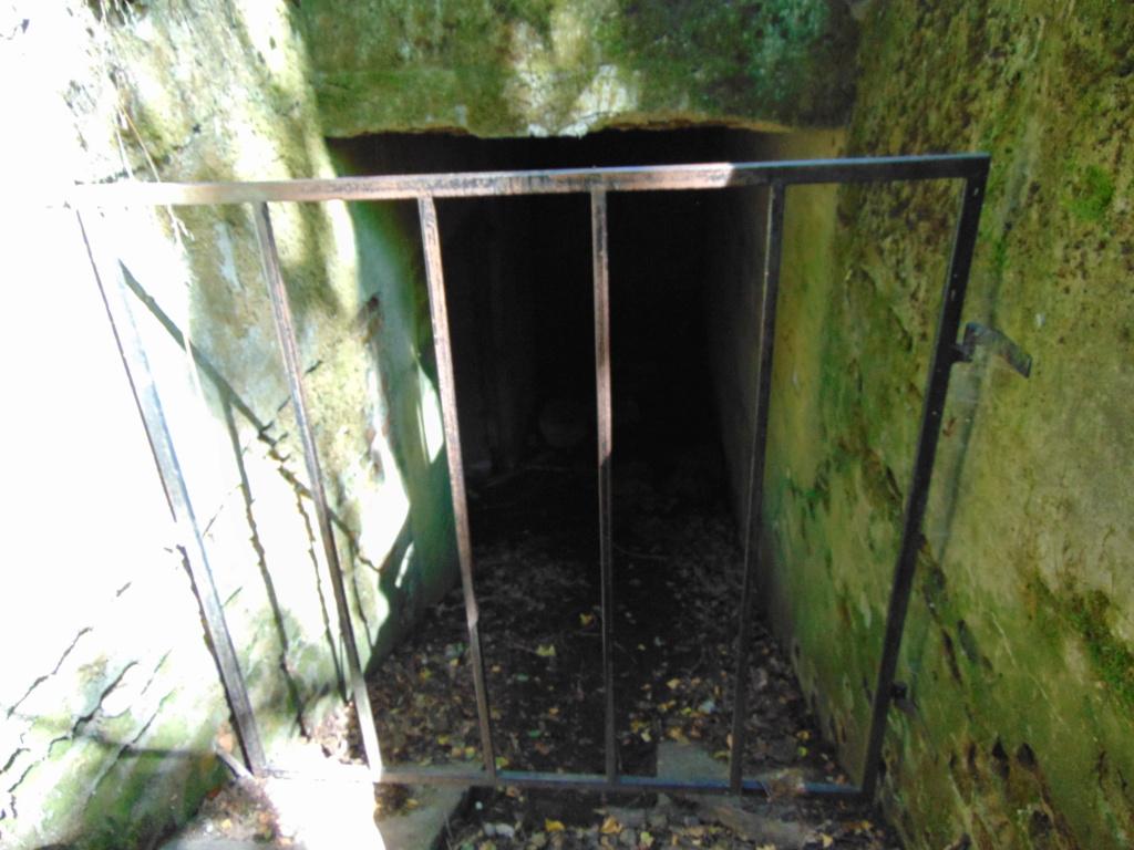 Restes d'un bunker d'Hitler - Page 2 Dsc02733