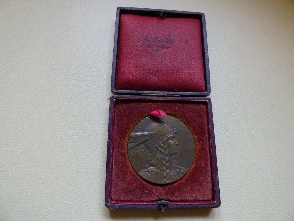 Mes médailles P1010718