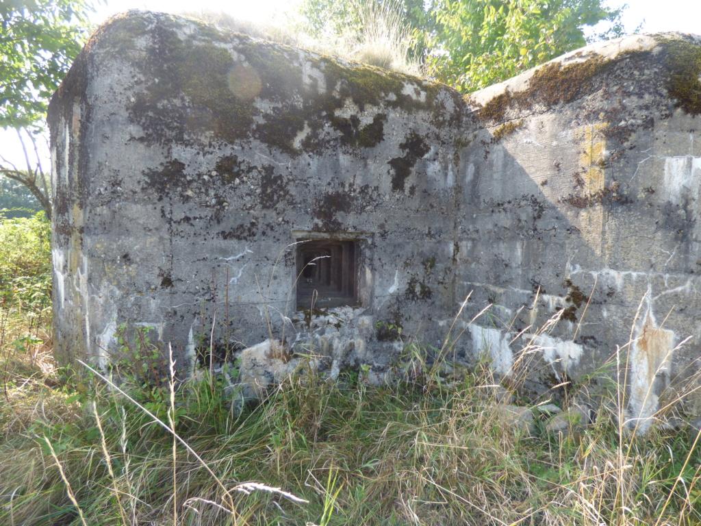 Nid de mitrailleuse slovaque P1020676