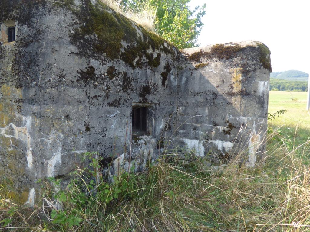 Nid de mitrailleuse slovaque P1020677