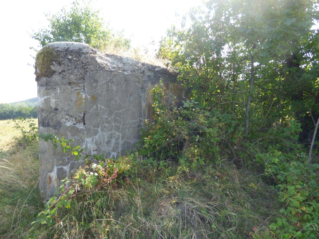Nid de mitrailleuse slovaque P1020681