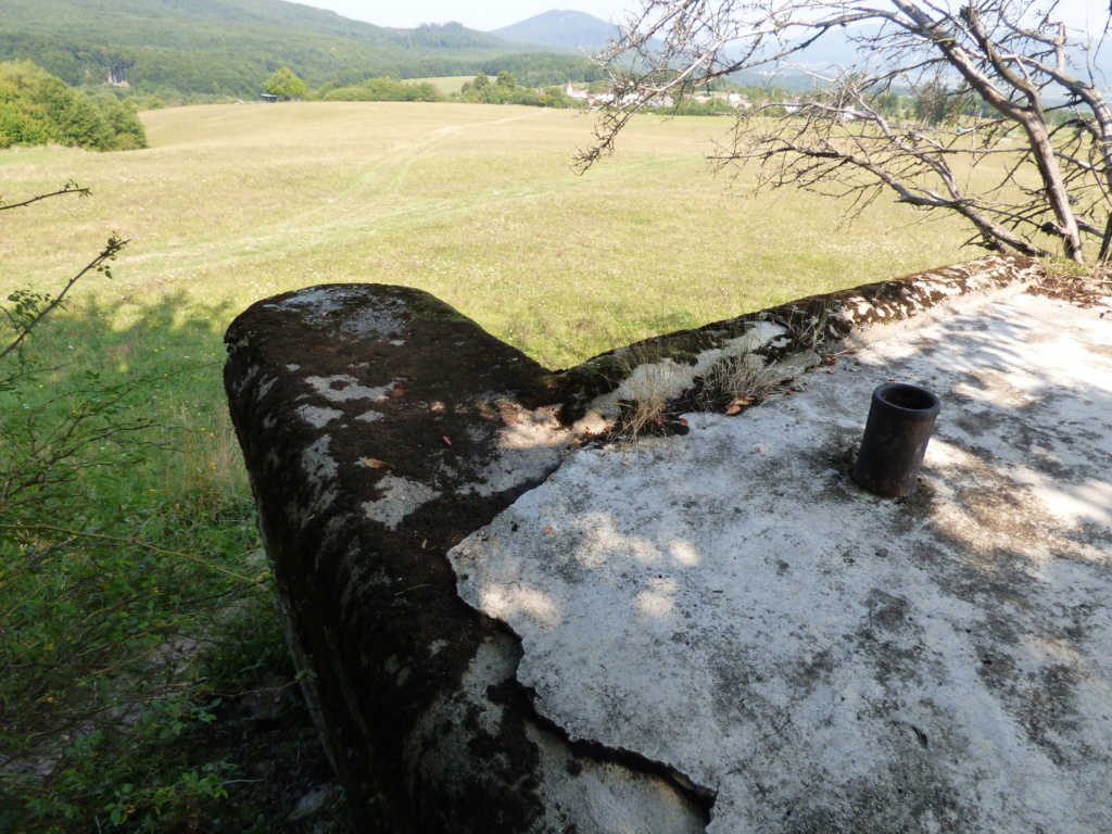 Nid de mitrailleuse slovaque P1020691