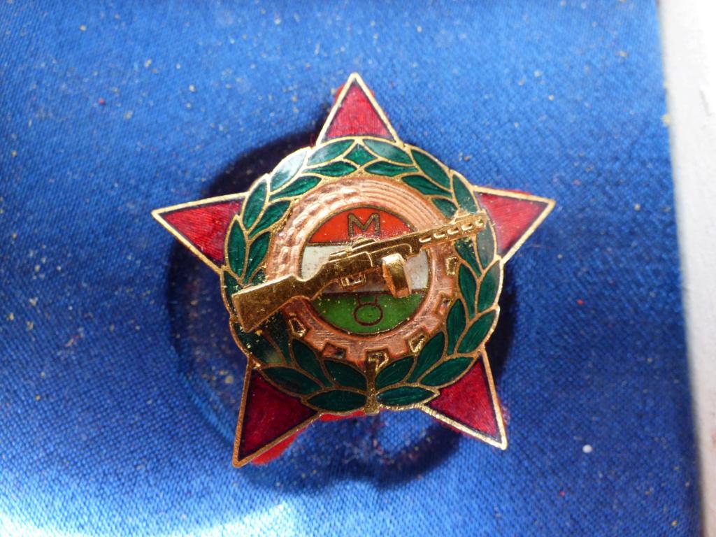 Médaille-insigne russe P1021042