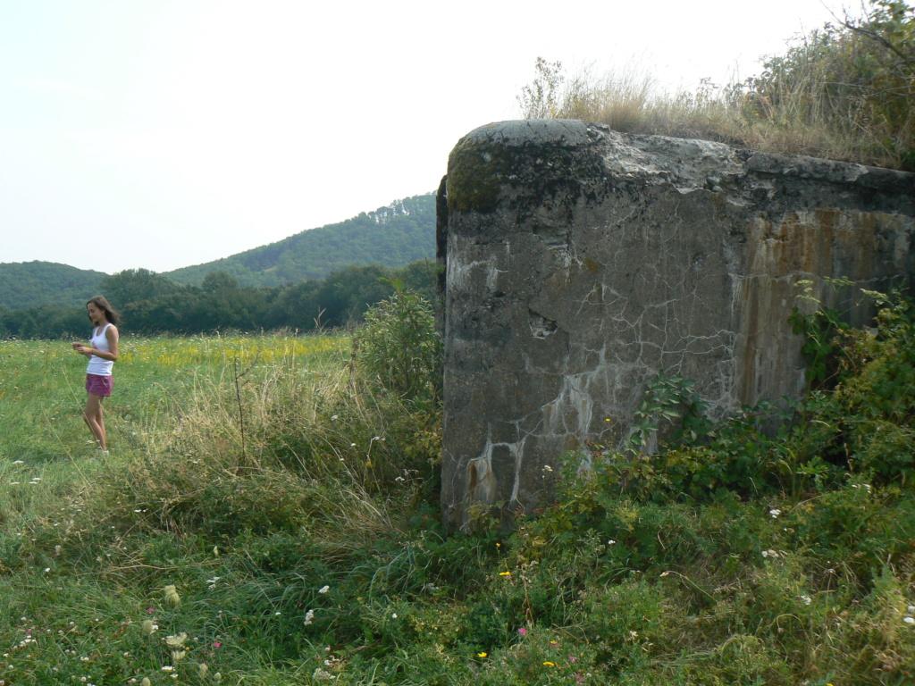 Nid de mitrailleuse slovaque P1090122