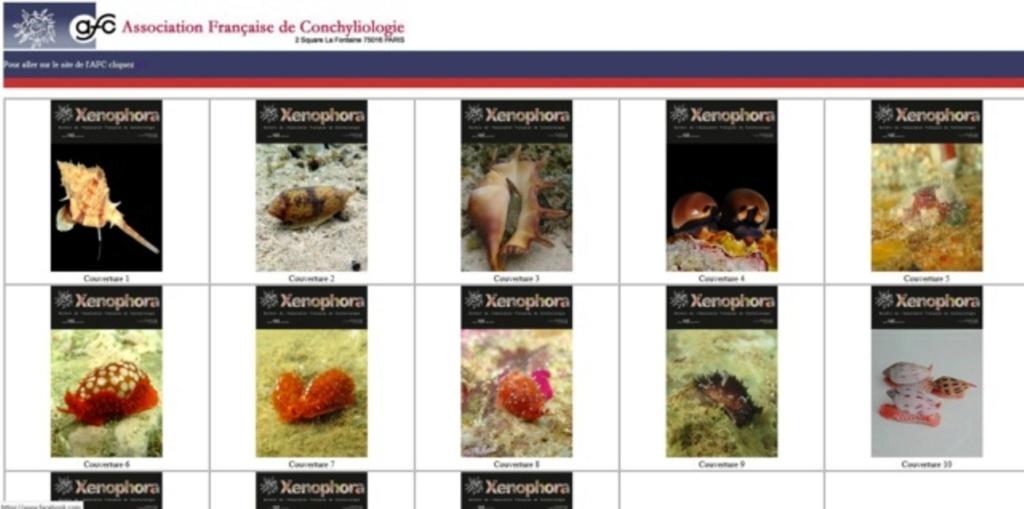 Concours photos pour Couverture du Xenophora X165 Janvier 2019 Captur10
