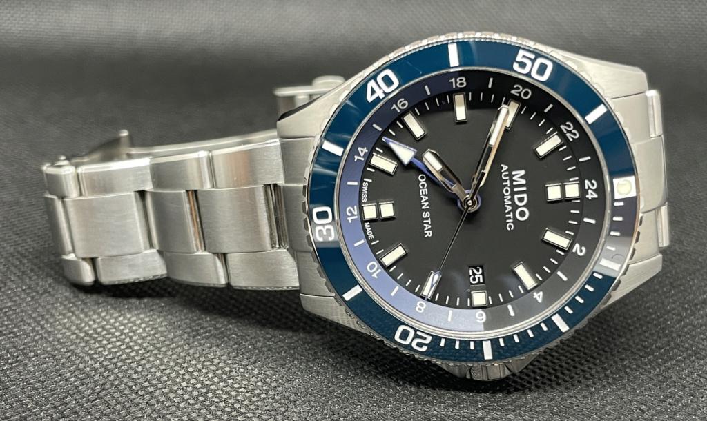 Avis sur une plongeuse GMT Ocean_10