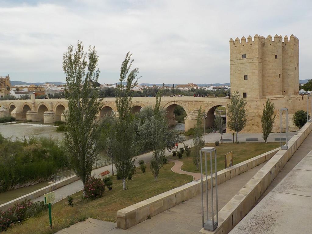 Balade en Andalousie Cordob10