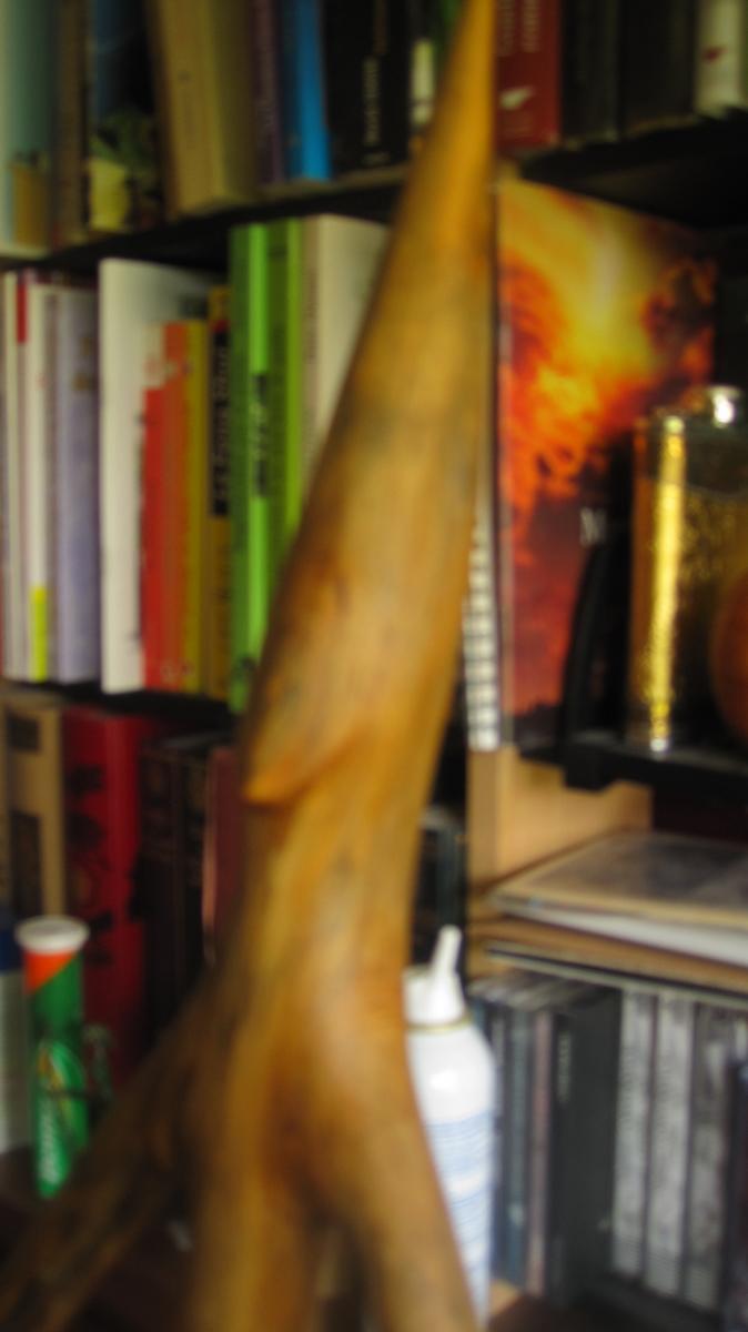 Sculptures XORION Img_3519