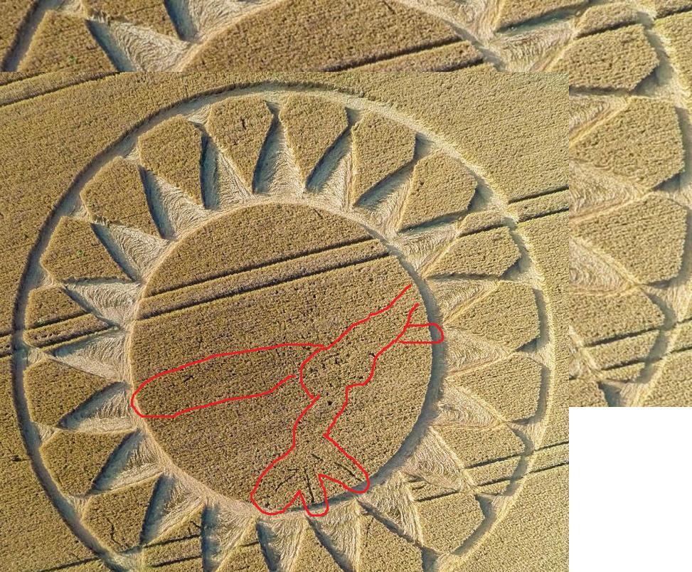 crop circles 2019 - Page 4 Screen10