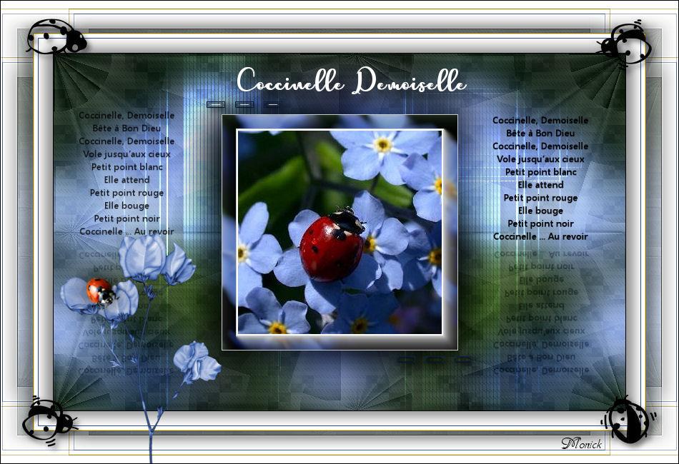 Coccinelle, Demoiselle(Psp) Cocci11