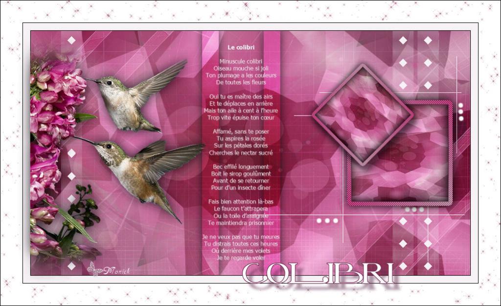Colibri (Psp) Colibr10