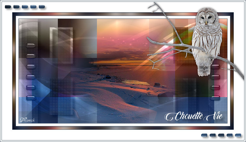 Chouette vie(Psp) Hibou10