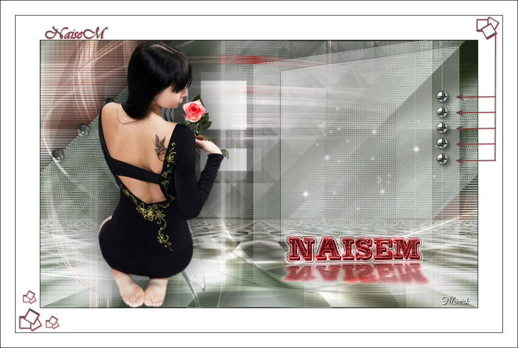 NaiseM (PSP) Naisem10
