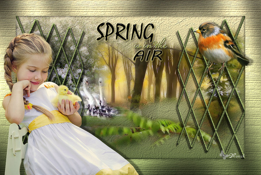 Du printemps dans l'air (psp) Spring10