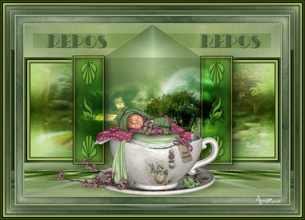 Repos (Psp) Tagrep10