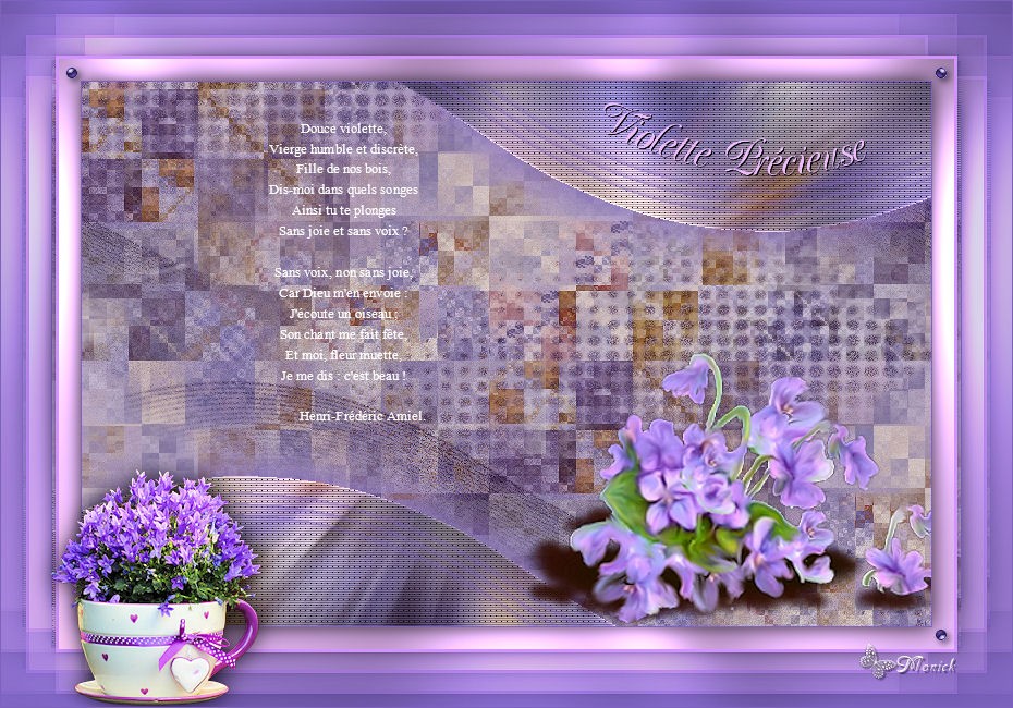 Violette Précieuse(Psp) Violet10