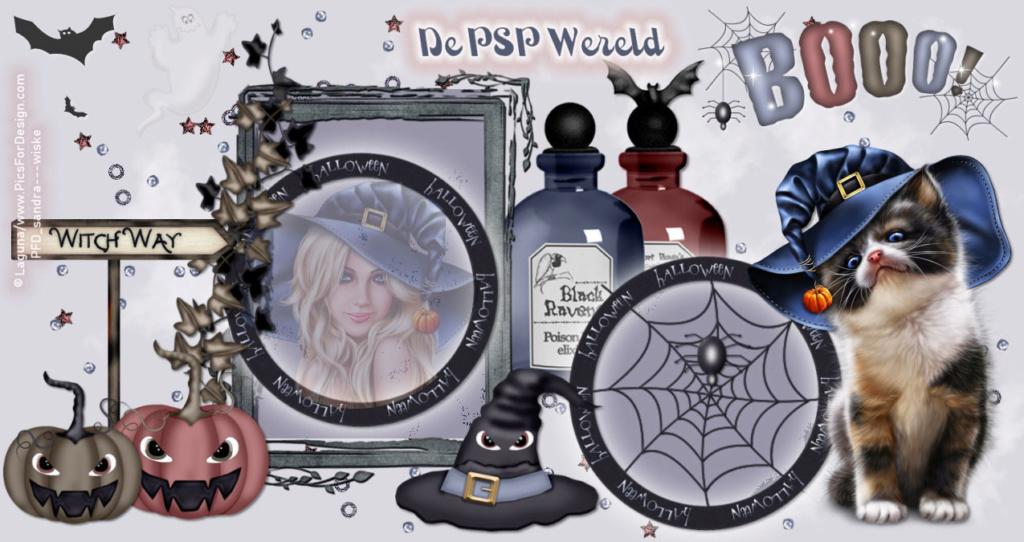 Sandra's PSP Wereld