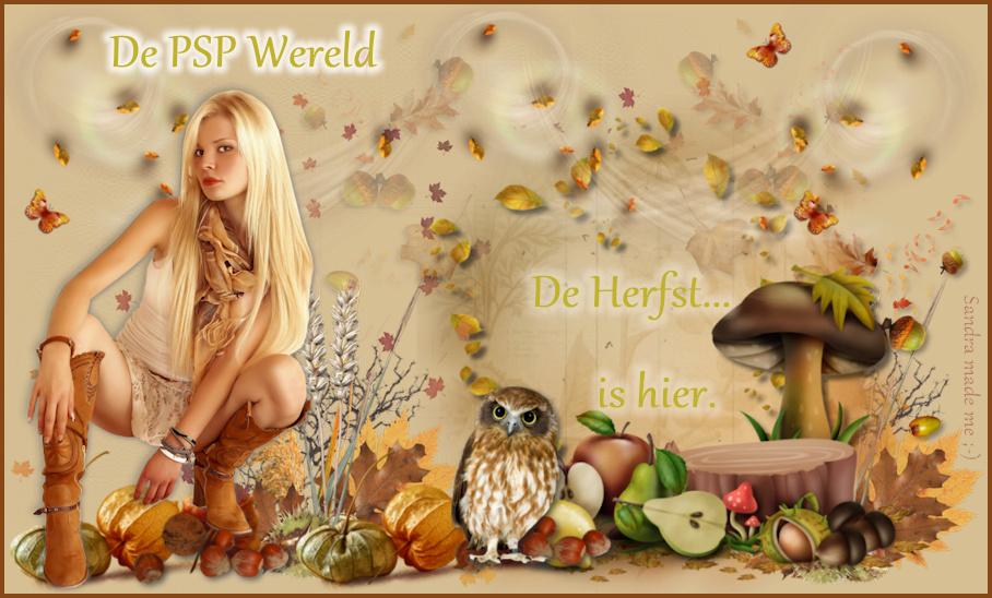 De PSP Wereld