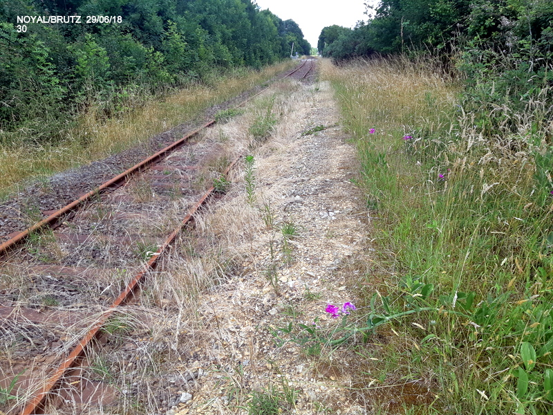 RETIERS -CHATEAUBRIANT : une ligne coupée depuis septembre 2017 20180127