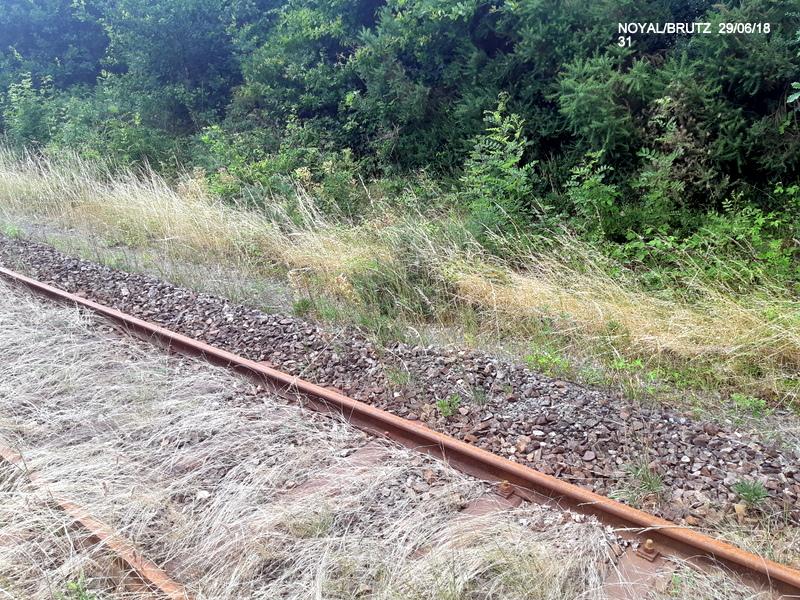 RETIERS -CHATEAUBRIANT : une ligne coupée depuis septembre 2017 20180128