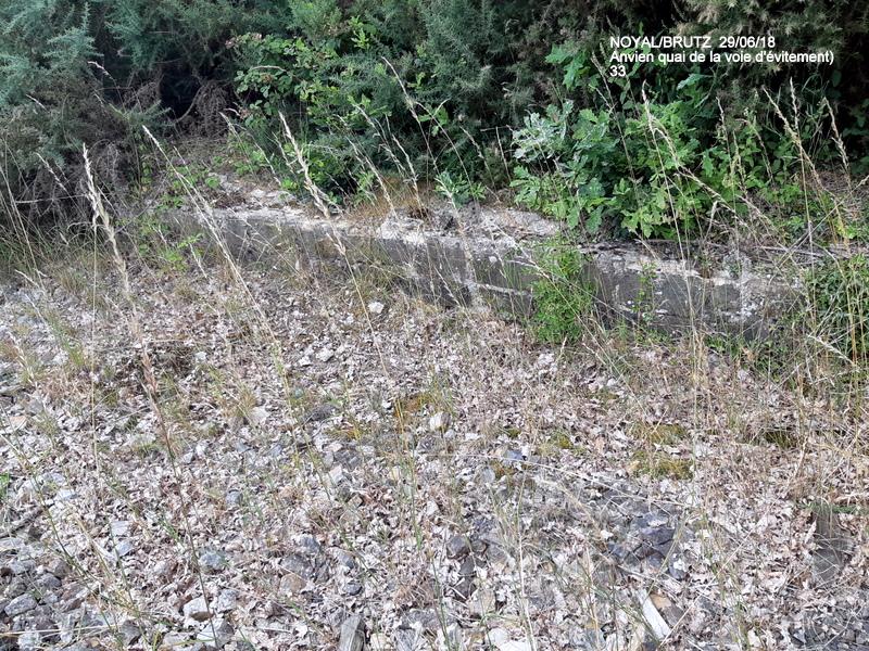 RETIERS -CHATEAUBRIANT : une ligne coupée depuis septembre 2017 20180131