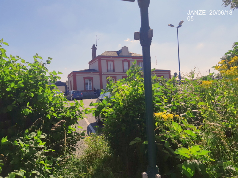 Ligne Rennes-Châteaubriant : Retiers Terminus (balade sur Janzé, Retiers 20/06/18) 20180643