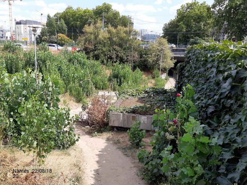 Petite balade Nantes 22/08/18 : Gare et chantier ligne A Tram 20180869