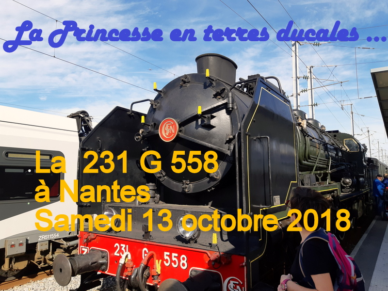 Nantes : 231G558 13 octobre 2018 20181068