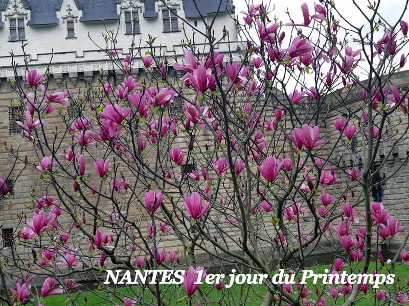 Nantes 13/09/2019 20190484